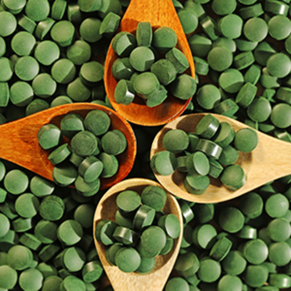 Сине-зеленая водоросль: в чем ее польза