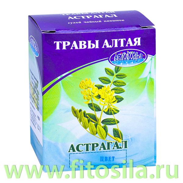 Астрагал шерстистоцветковый 25 г (коробочка), чайный напиток